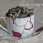 [Recipe] Grain-Free Dairy-Free Blueberry Mug Muffin