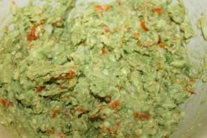 guacamole8