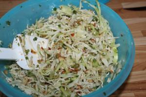 asian coleslaw 13