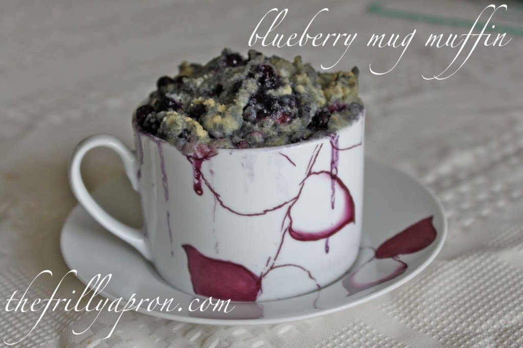 blueberry mug muffin cover1