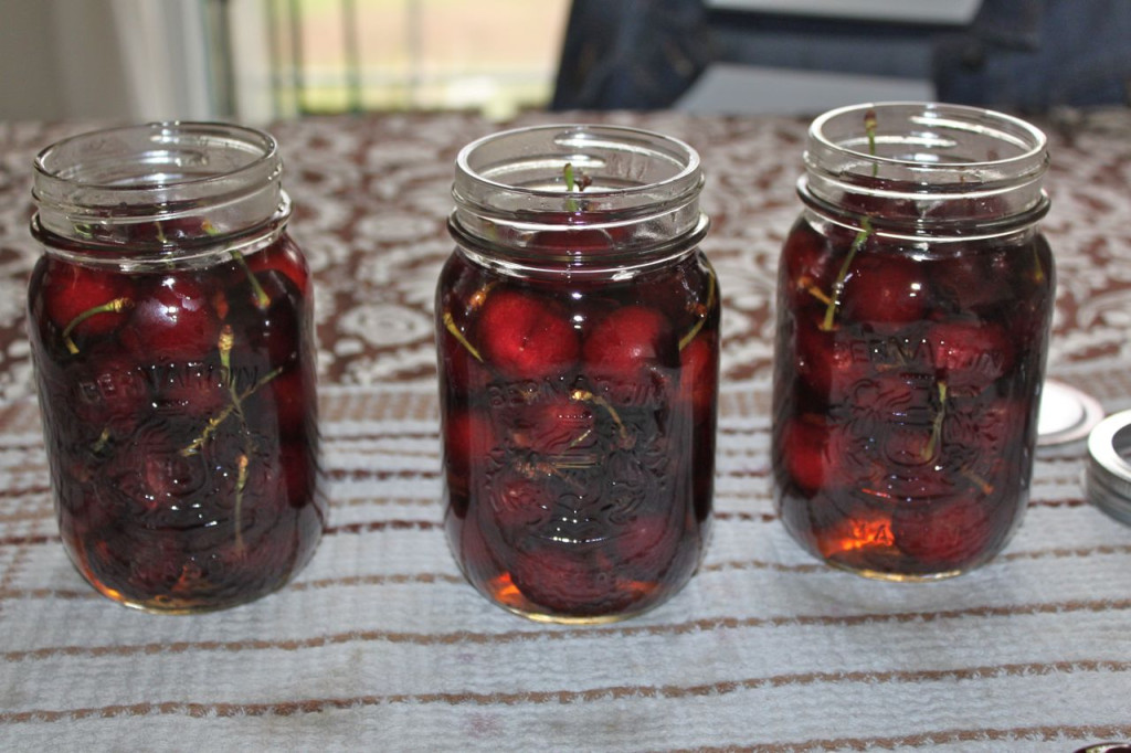 boozy bourbon soaked cherries 13