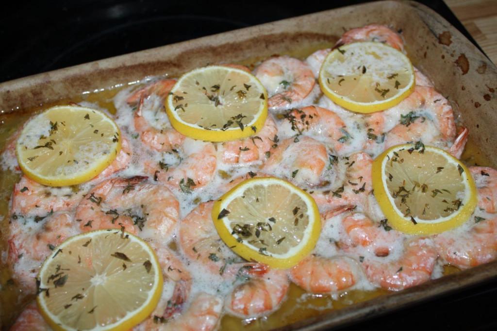 shrimp 8