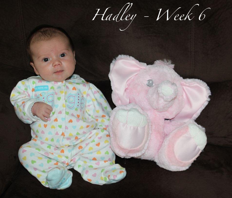Hadley-Week6